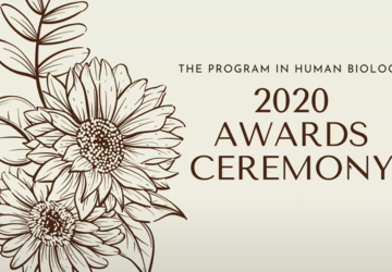 Opening Image of 2020 Awards Ceremony